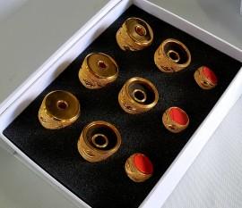 Capelotes Trompete - Artisian Gold